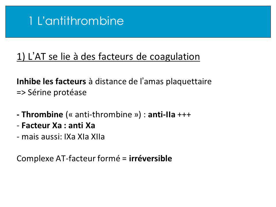 1 L'antithrombine 1) L'AT se lie à des facteurs de coagulation