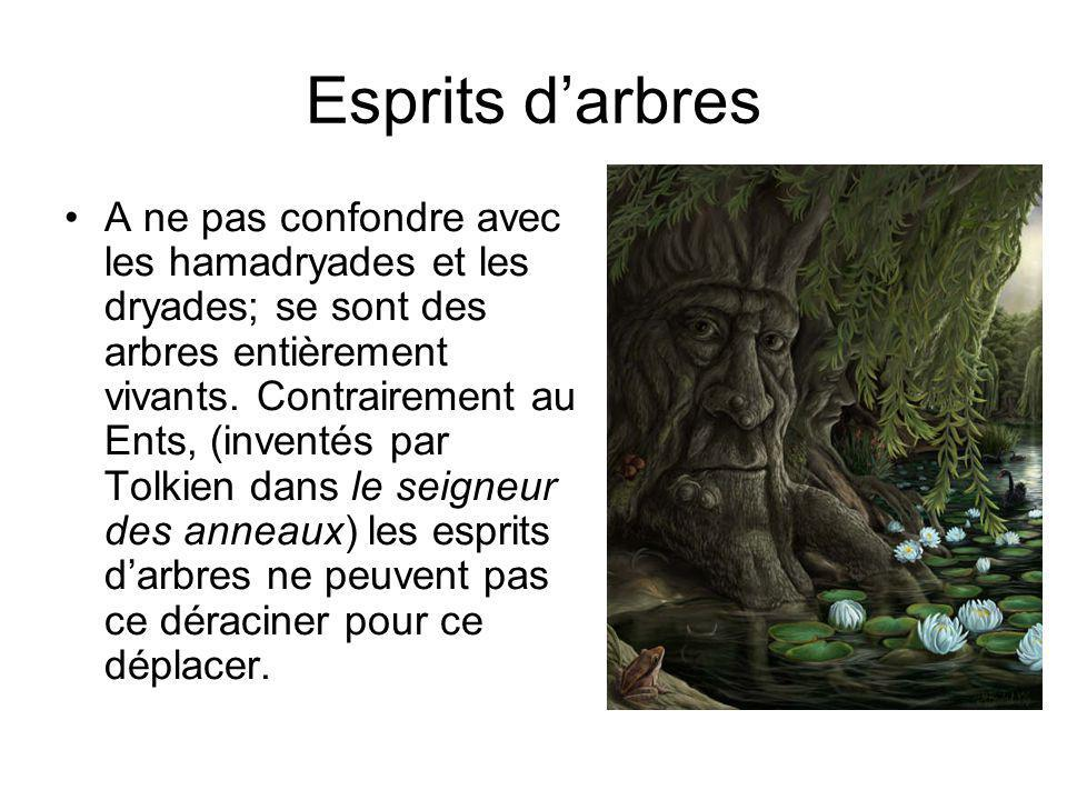 Esprits d'arbres