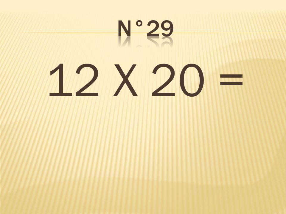 n°29 12 X 20 = 240
