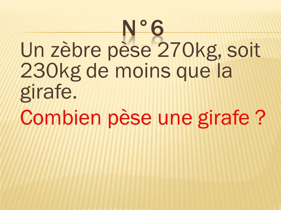 n°6 Un zèbre pèse 270kg, soit 230kg de moins que la girafe.