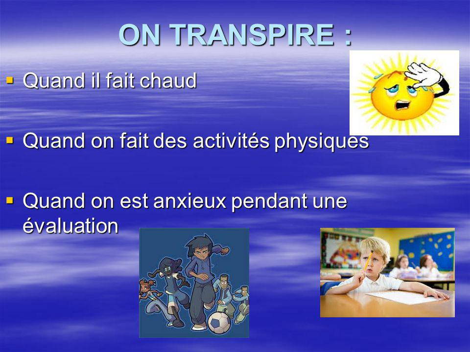 ON TRANSPIRE : Quand il fait chaud