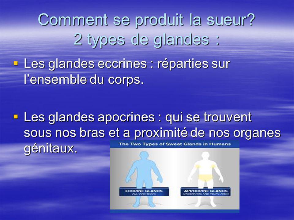 Comment se produit la sueur 2 types de glandes :
