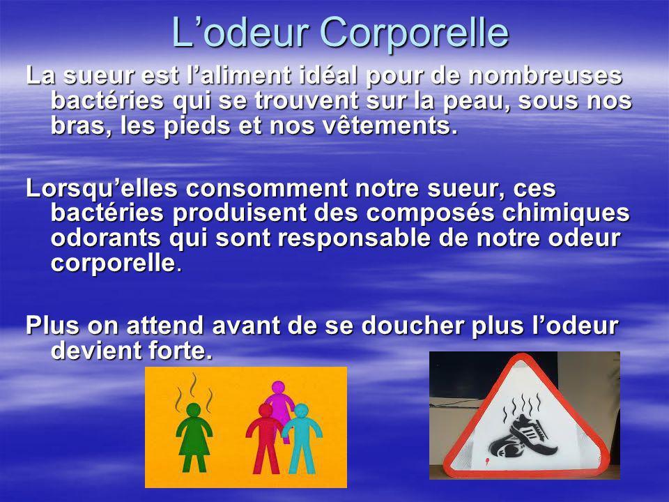L'odeur Corporelle La sueur est l'aliment idéal pour de nombreuses bactéries qui se trouvent sur la peau, sous nos bras, les pieds et nos vêtements.