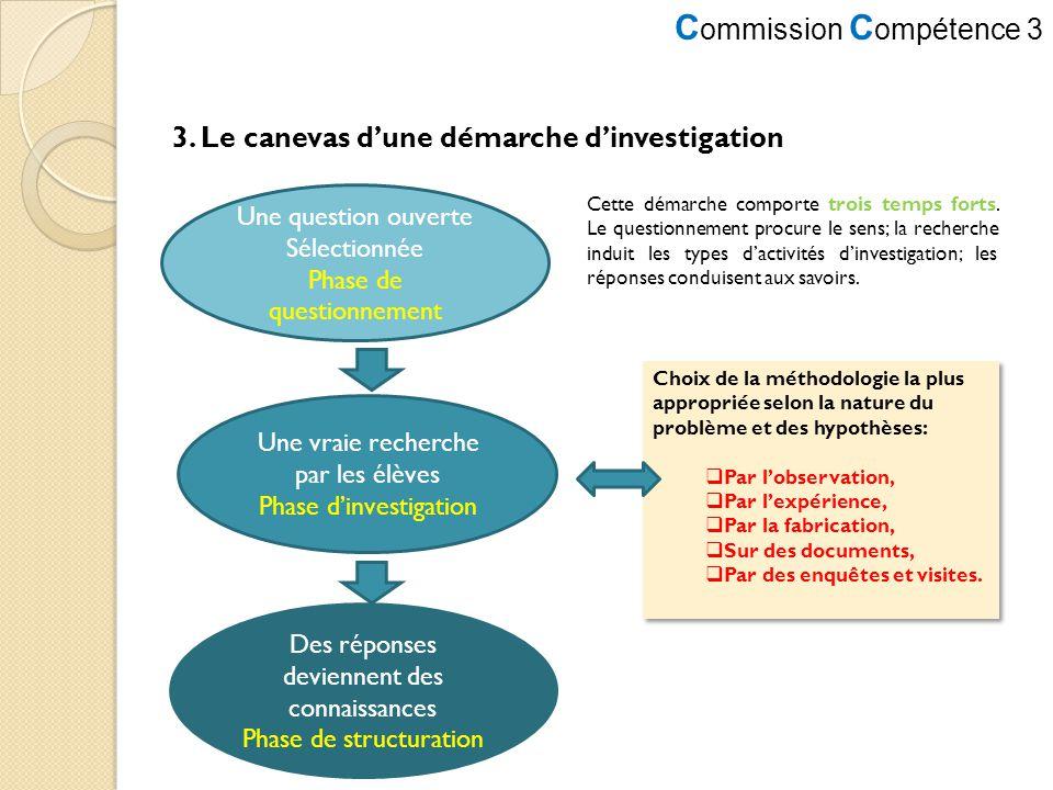 3. Le canevas d'une démarche d'investigation