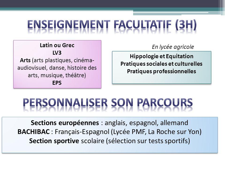 Enseignement facultatif (3h)
