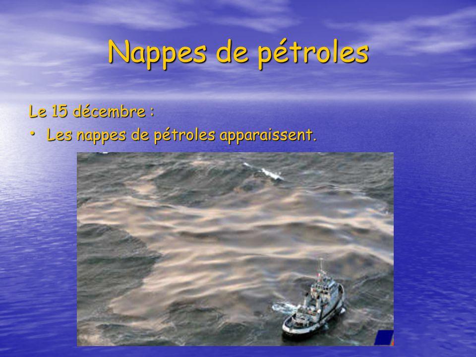 Nappes de pétroles Le 15 décembre :