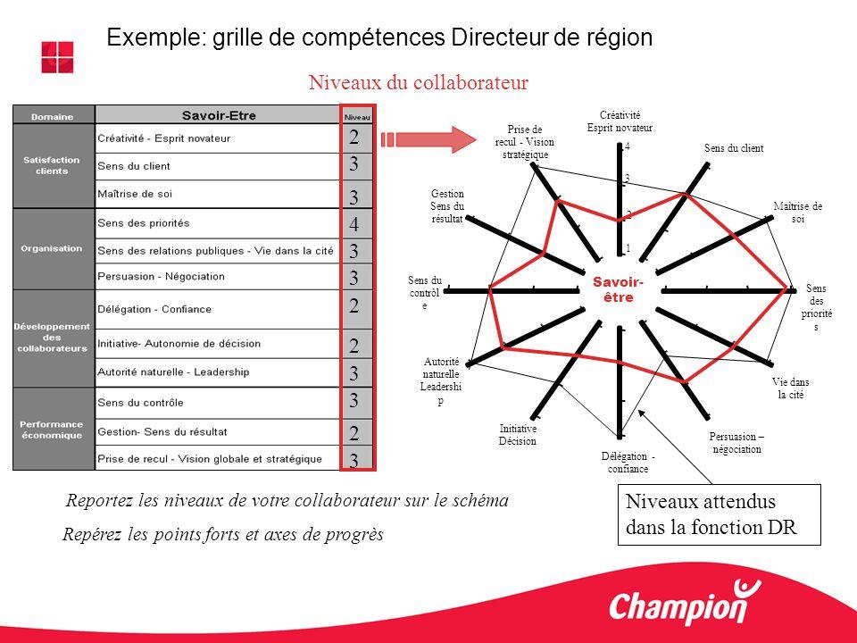 Exemple: grille de compétences Directeur de région