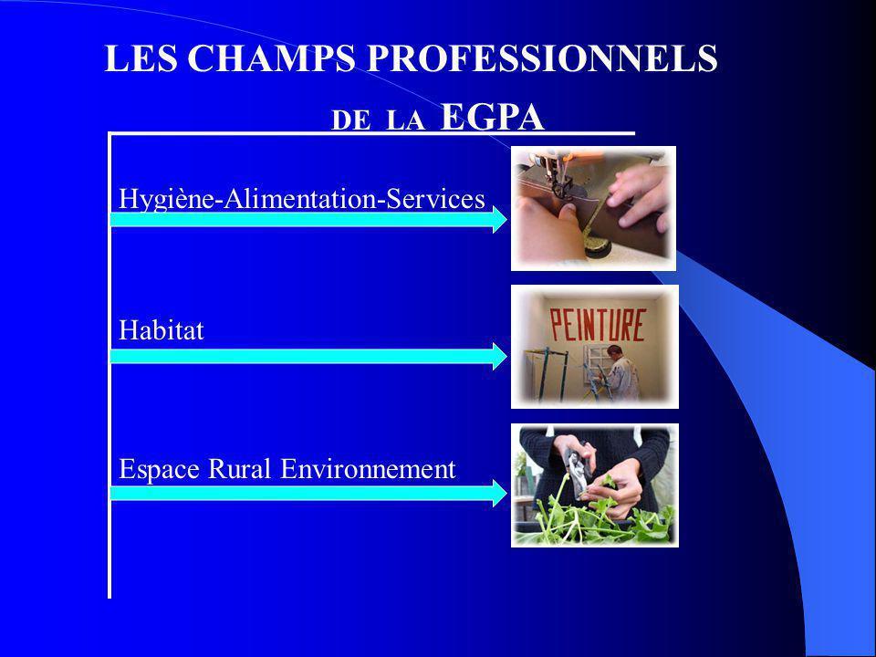 LES CHAMPS PROFESSIONNELS