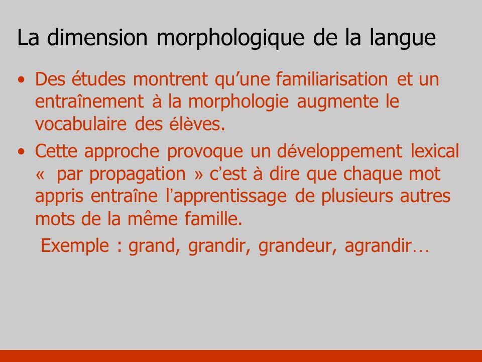 La dimension morphologique de la langue