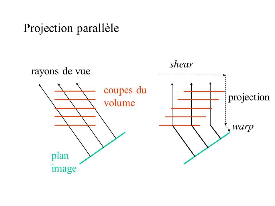 Projection parallèle shear rayons de vue coupes du volume projection