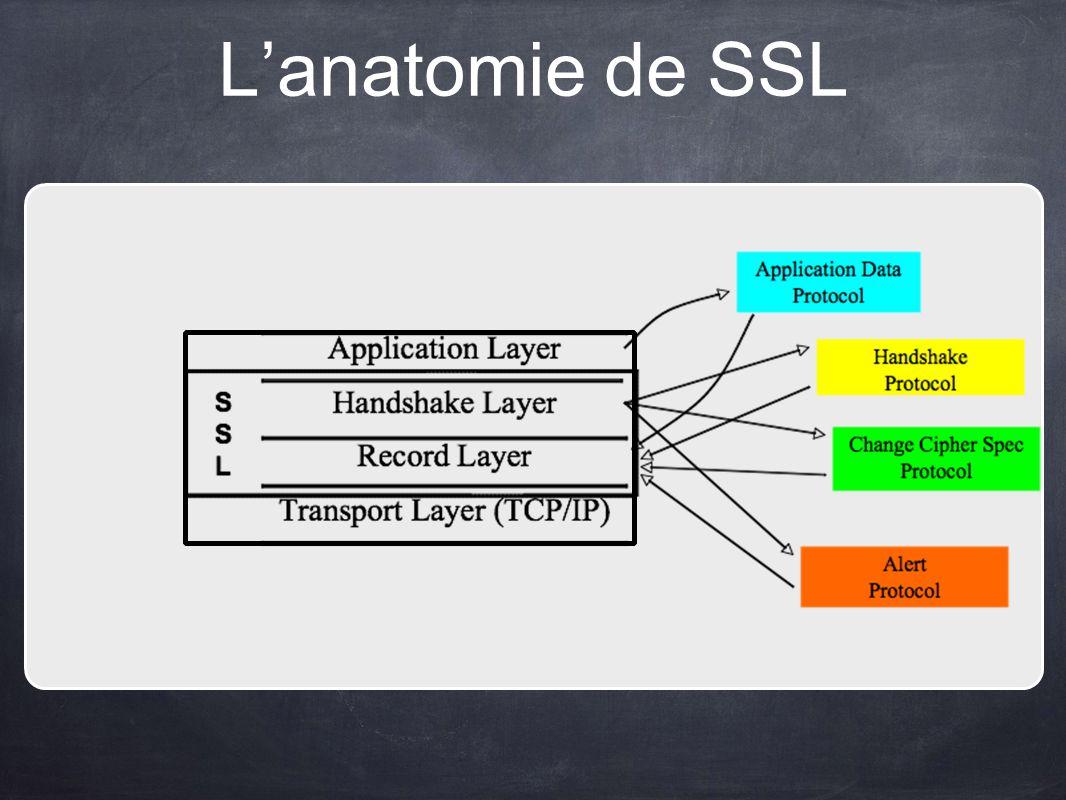 L'anatomie de SSL
