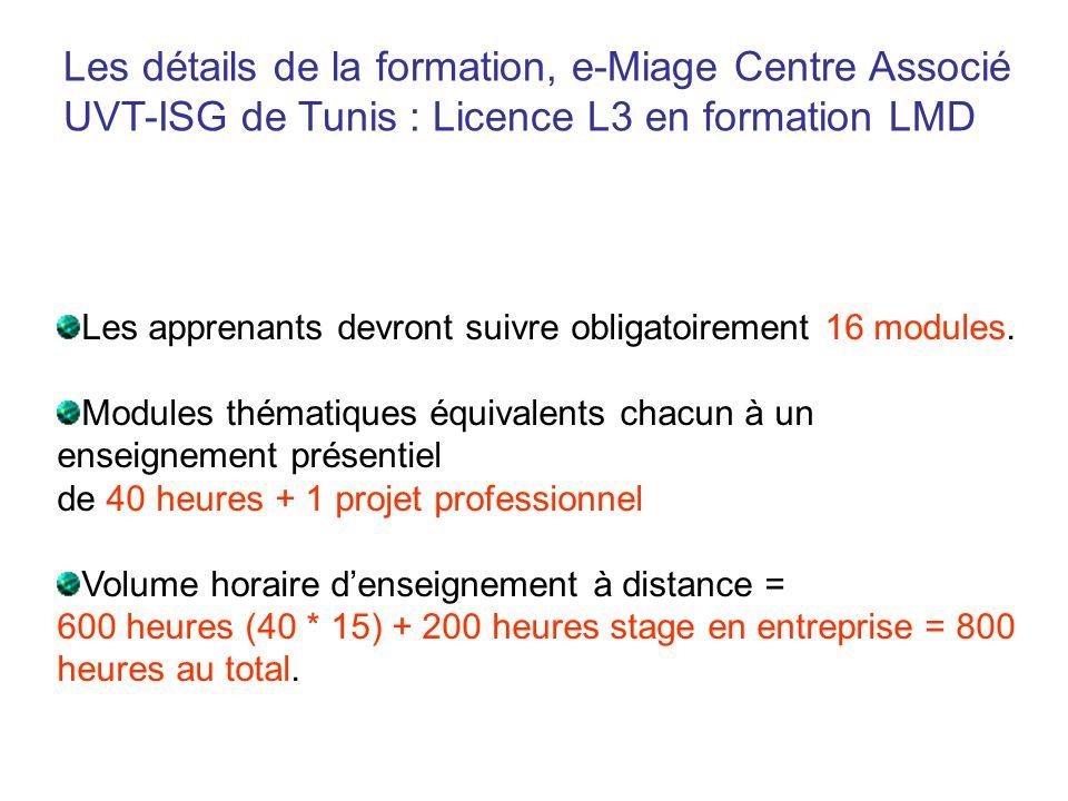 Les détails de la formation, e-Miage Centre Associé