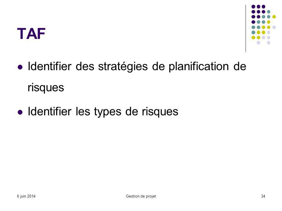 TAF Identifier des stratégies de planification de risques