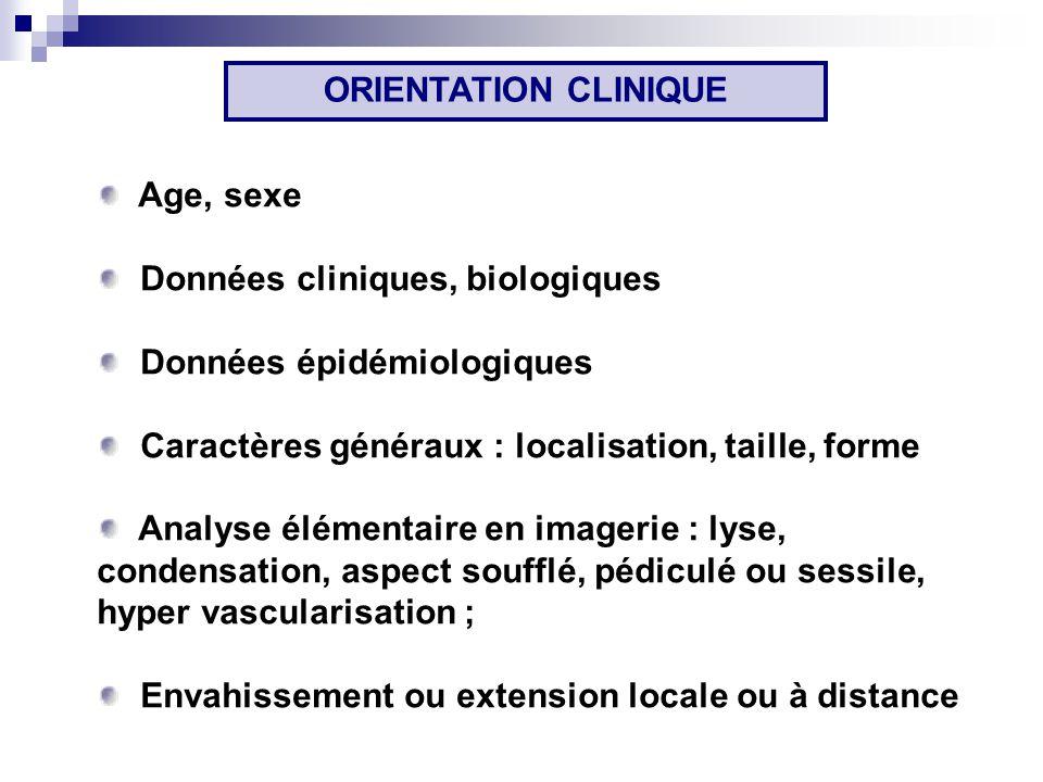 ORIENTATION CLINIQUE Age, sexe. Données cliniques, biologiques. Données épidémiologiques. Caractères généraux : localisation, taille, forme.