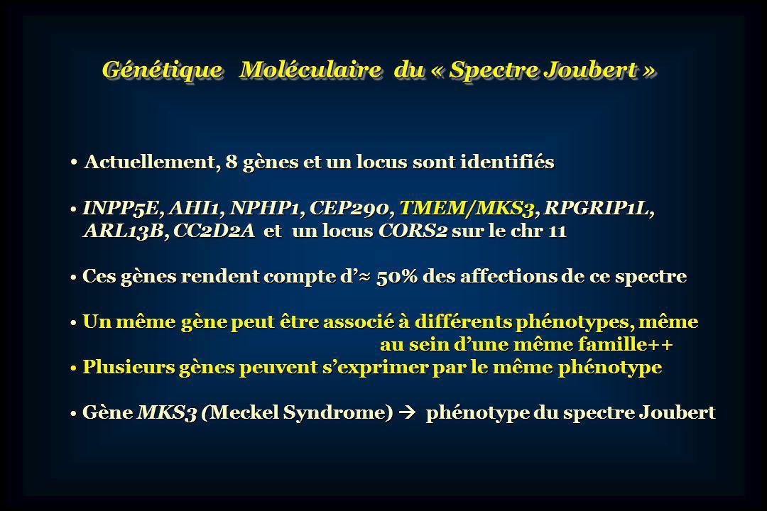 Génétique Moléculaire du « Spectre Joubert »