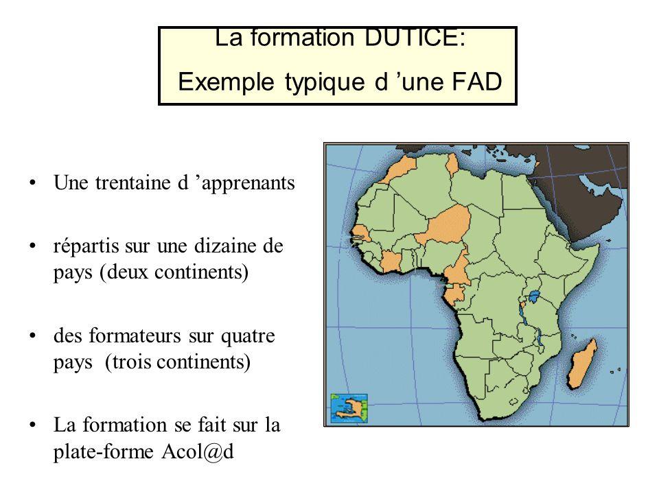 La formation DUTICE: Exemple typique d 'une FAD