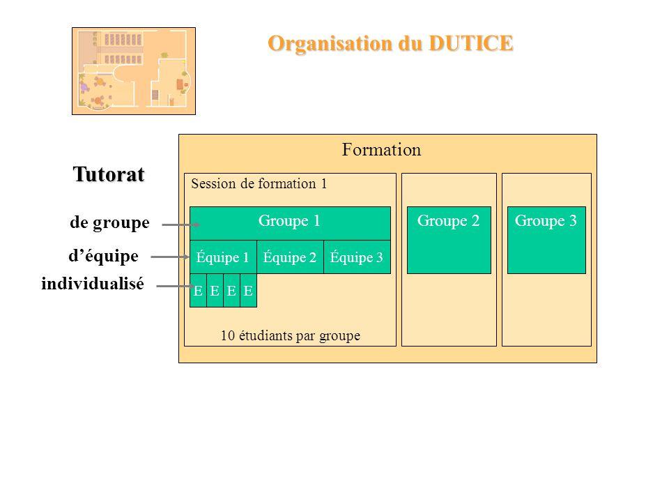 Organisation du DUTICE