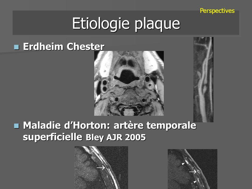 Etiologie plaque Erdheim Chester