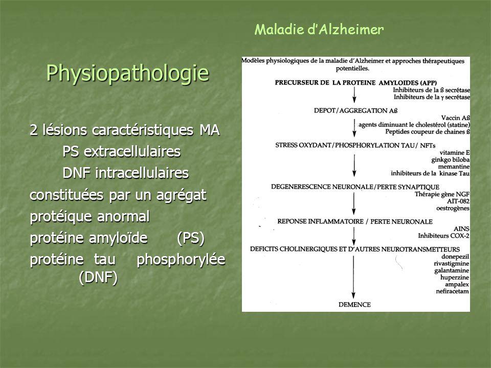 Physiopathologie 2 lésions caractéristiques MA PS extracellulaires