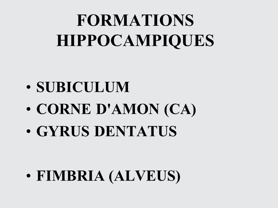FORMATIONS HIPPOCAMPIQUES