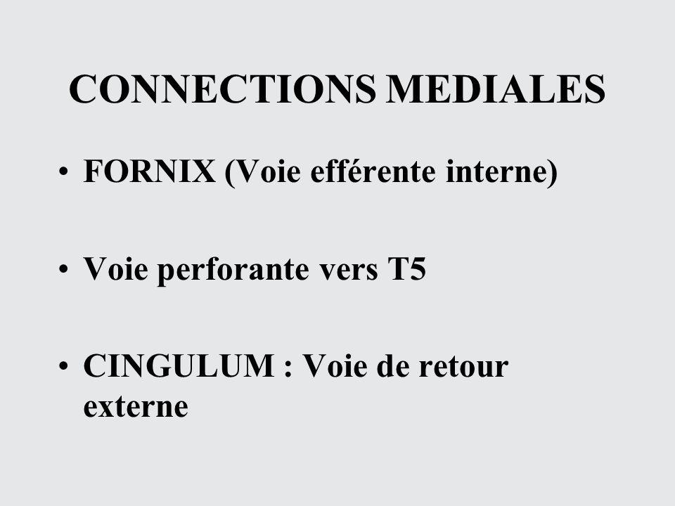 CONNECTIONS MEDIALES FORNIX (Voie efférente interne)