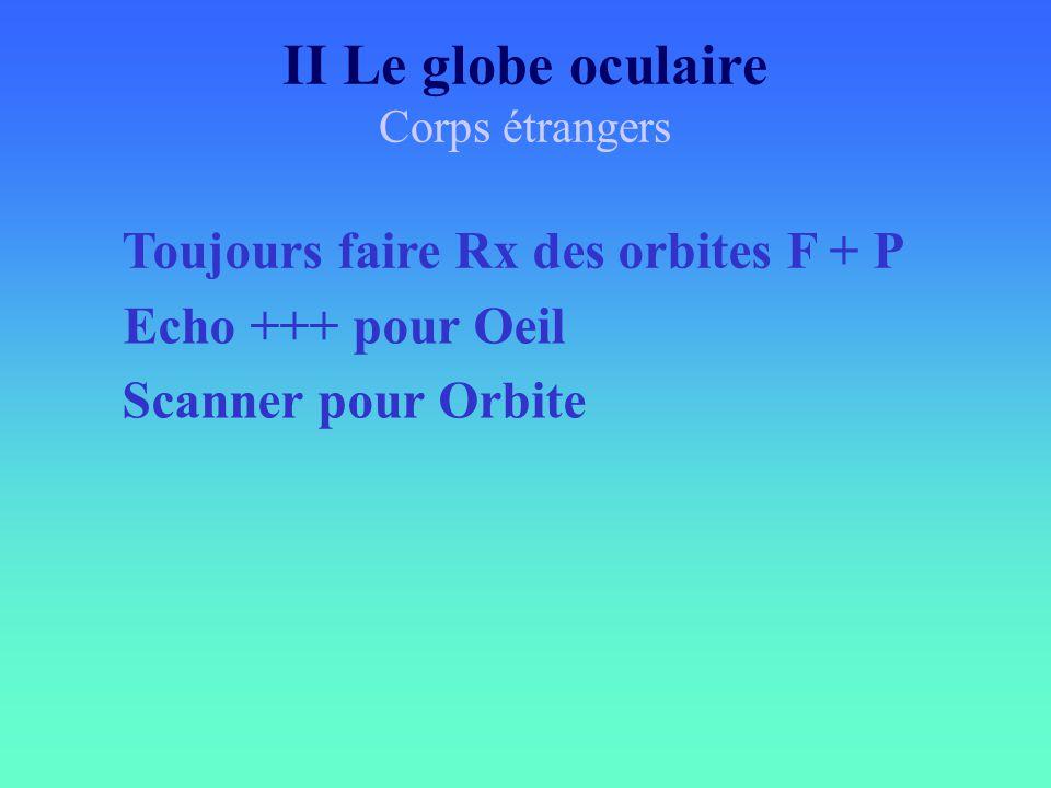 II Le globe oculaire Toujours faire Rx des orbites F + P