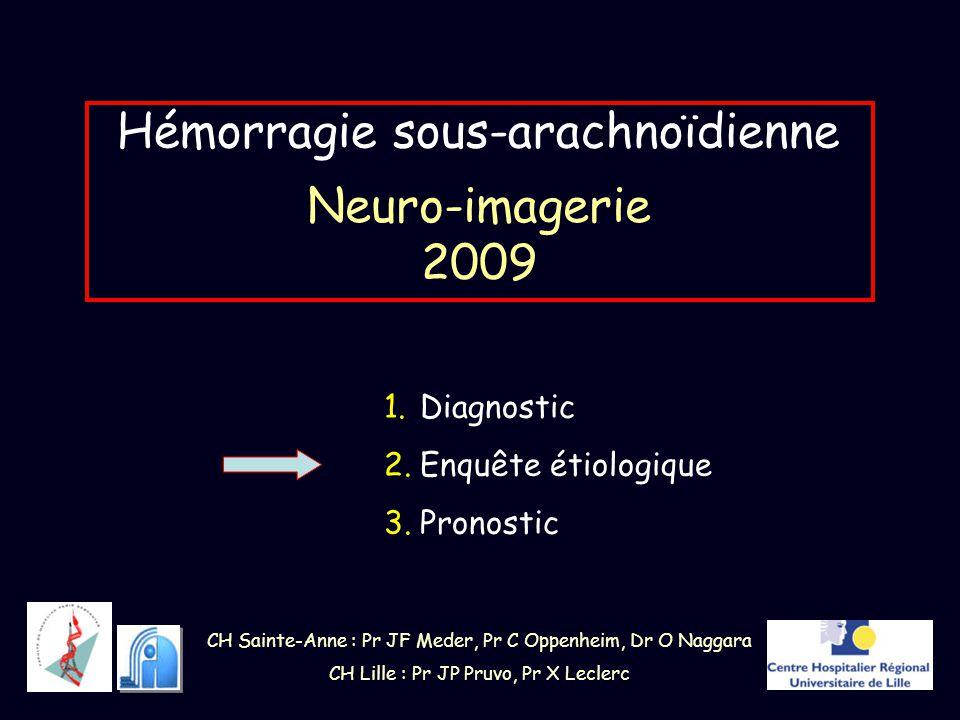 Hémorragie sous-arachnoïdienne Neuro-imagerie 2009