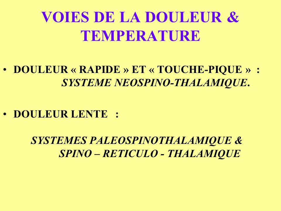 VOIES DE LA DOULEUR & TEMPERATURE