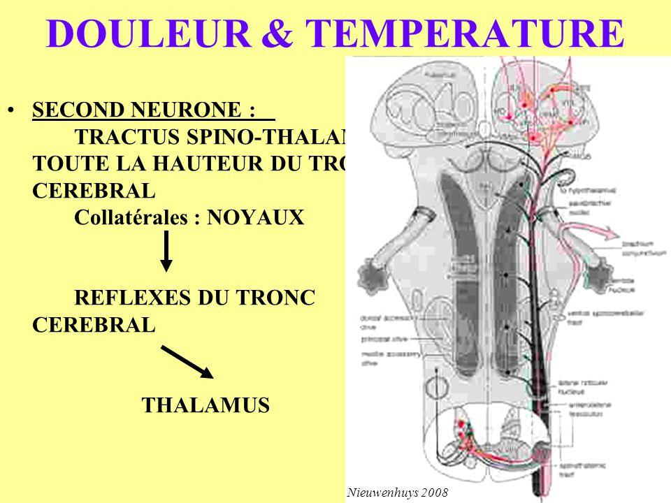 DOULEUR & TEMPERATURE