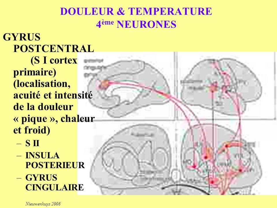 DOULEUR & TEMPERATURE 4ème NEURONES