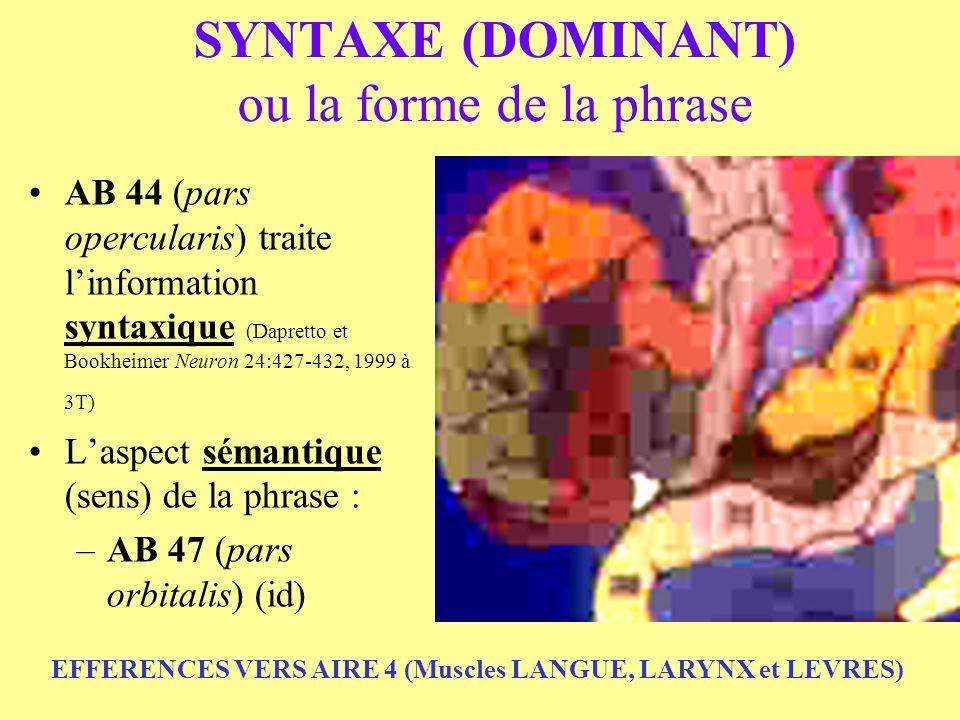 SYNTAXE (DOMINANT) ou la forme de la phrase