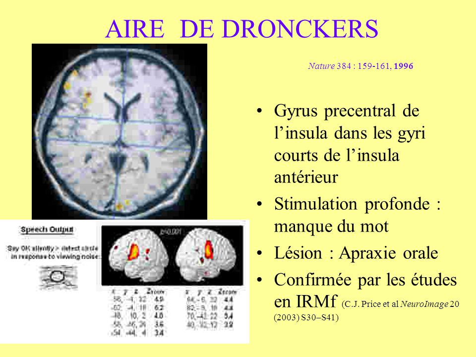 AIRE DE DRONCKERS Nature 384 : 159-161, 1996