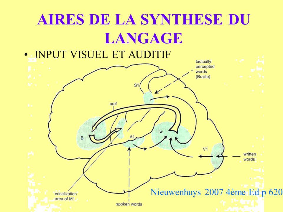 AIRES DE LA SYNTHESE DU LANGAGE