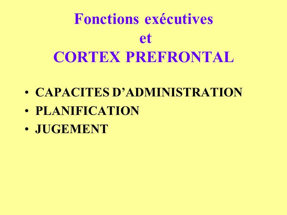 Fonctions exécutives et CORTEX PREFRONTAL