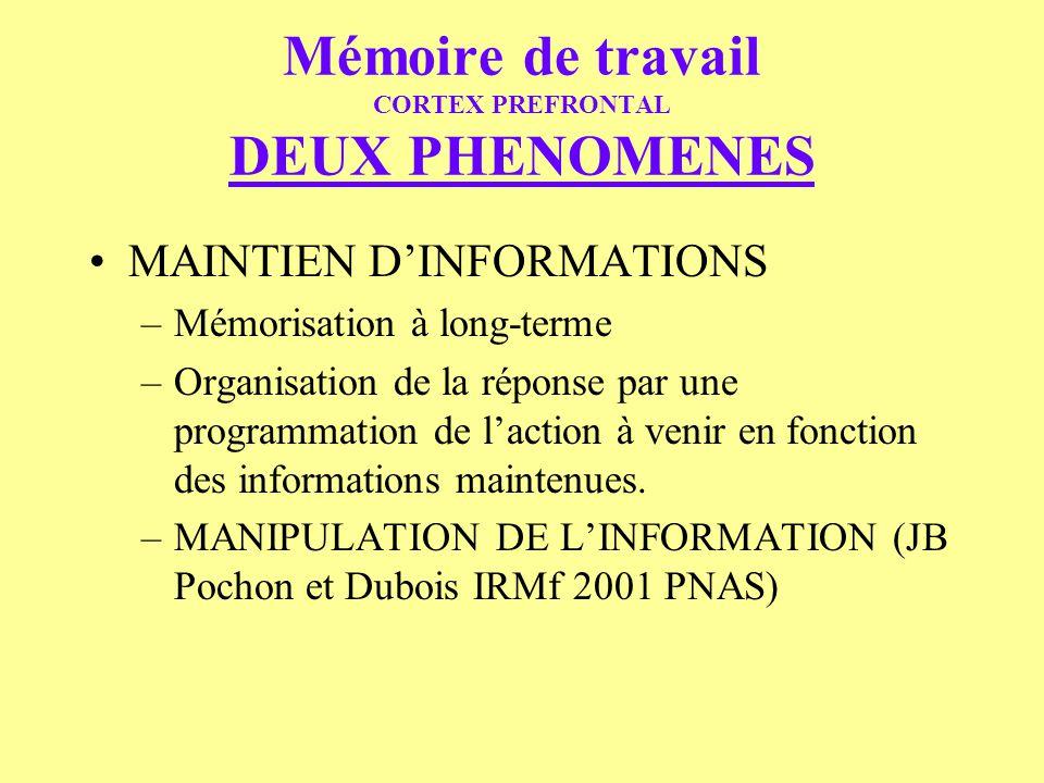 Mémoire de travail CORTEX PREFRONTAL DEUX PHENOMENES