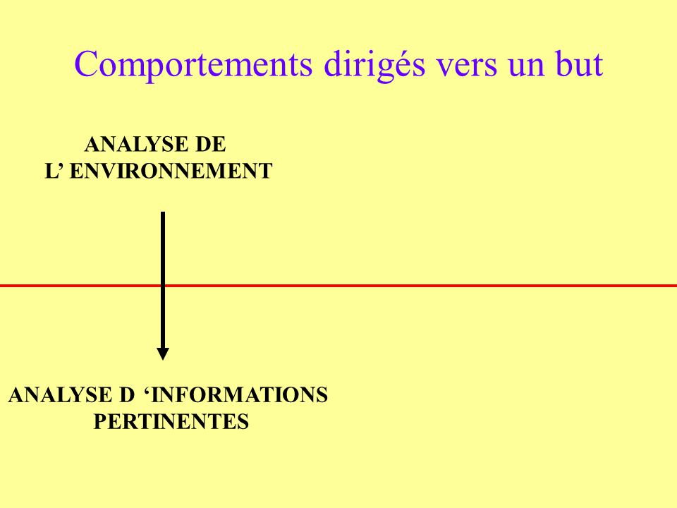 Comportements dirigés vers un but