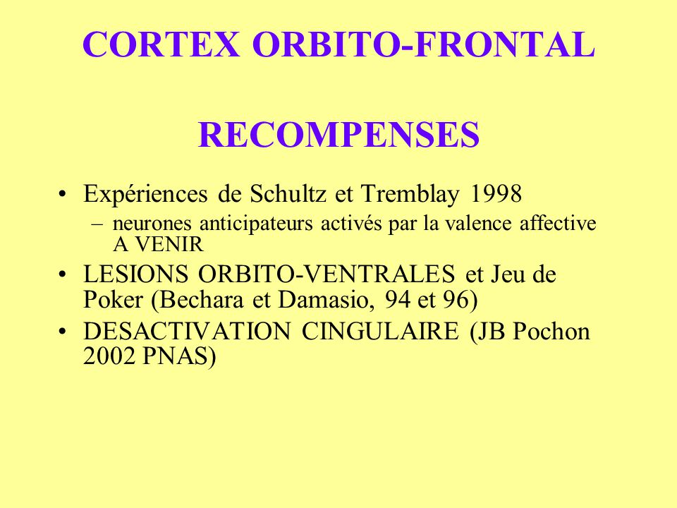 CORTEX ORBITO-FRONTAL RECOMPENSES