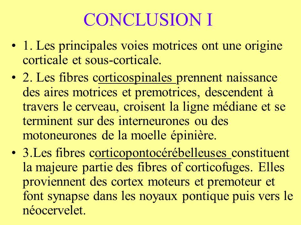 CONCLUSION I 1. Les principales voies motrices ont une origine corticale et sous-corticale.