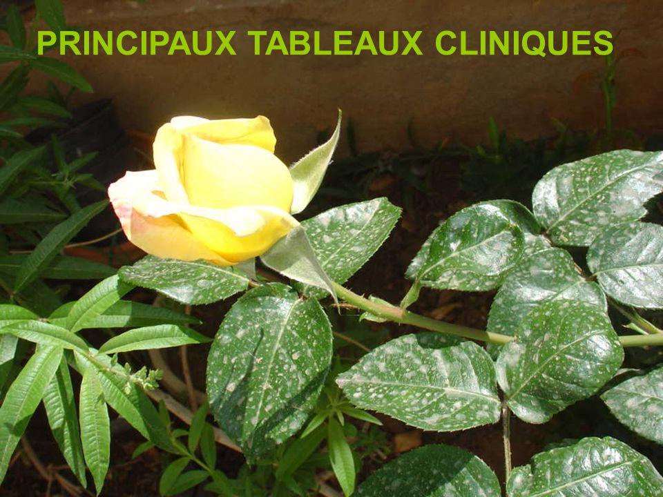 PRINCIPAUX TABLEAUX CLINIQUES
