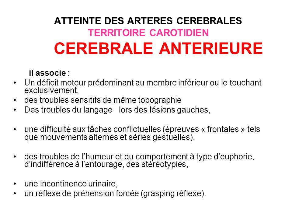 ATTEINTE DES ARTERES CEREBRALES TERRITOIRE CAROTIDIEN CEREBRALE ANTERIEURE