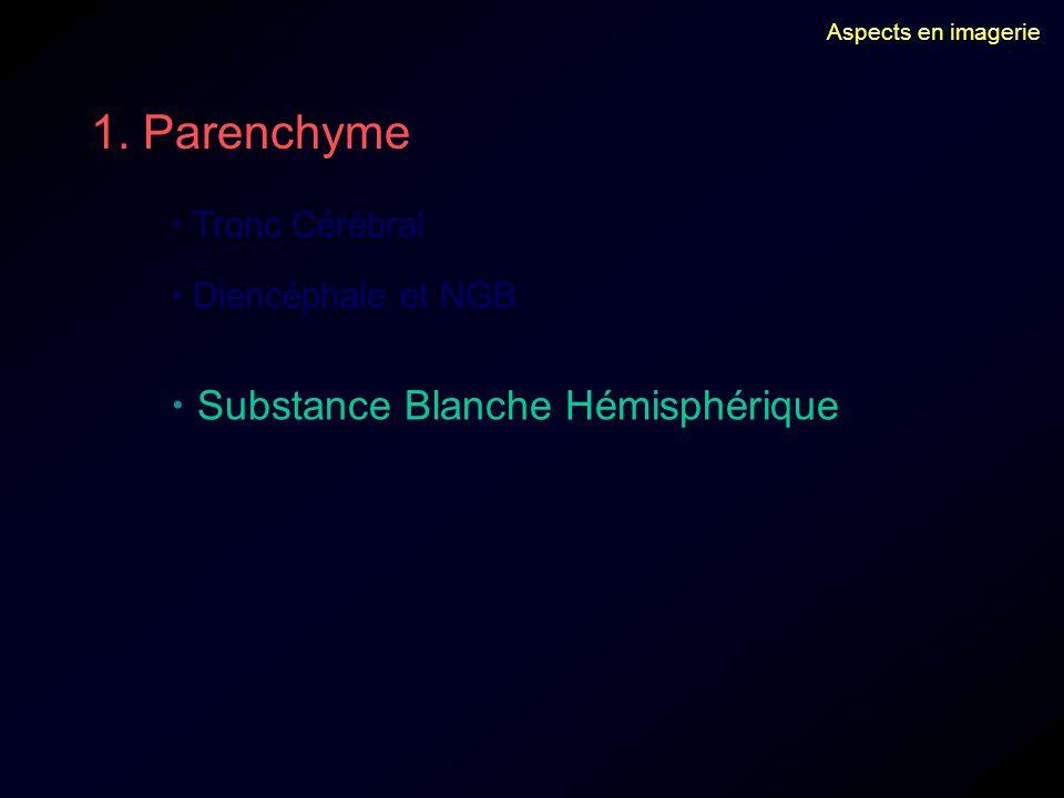 1. Parenchyme  Substance Blanche Hémisphérique  Tronc Cérébral