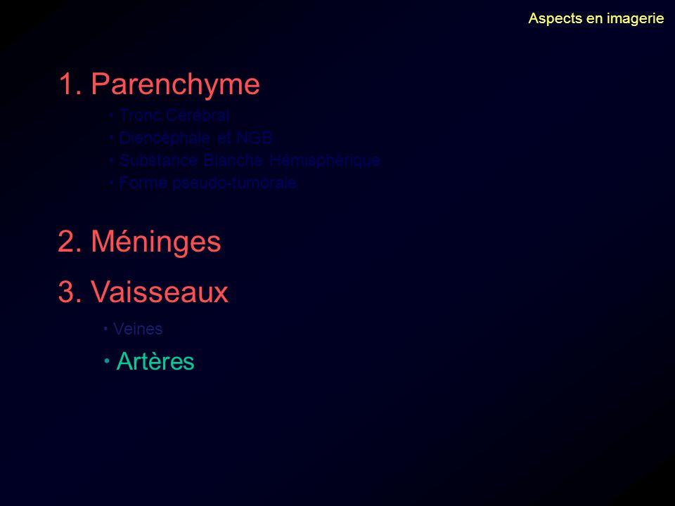 1. Parenchyme 2. Méninges 3. Vaisseaux  Artères  Tronc Cérébral