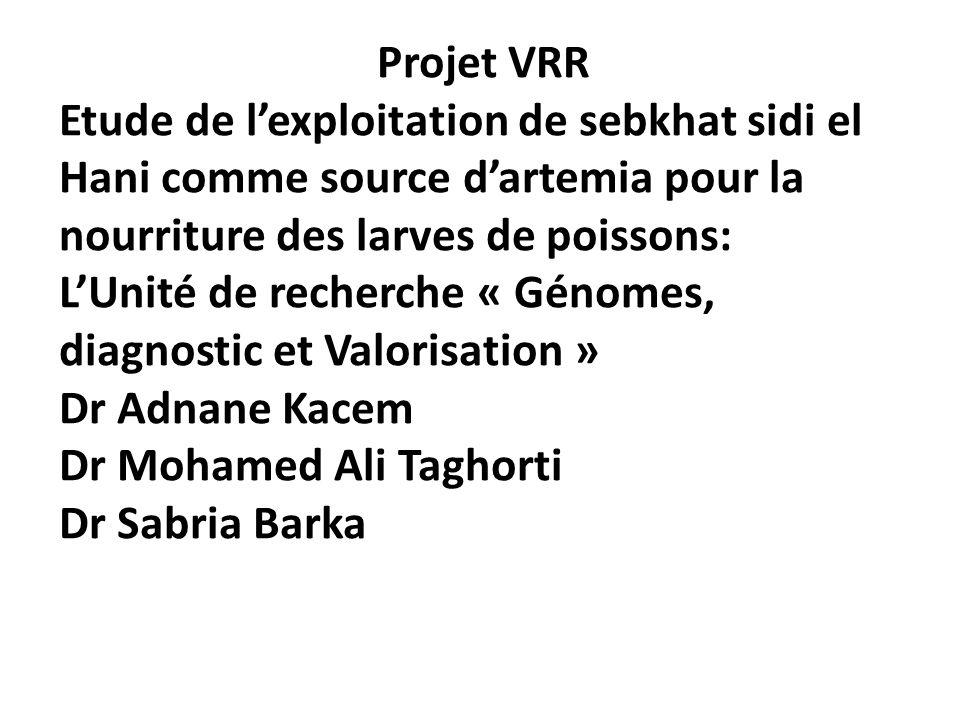 Projet VRR Etude de l'exploitation de sebkhat sidi el Hani comme source d'artemia pour la nourriture des larves de poissons:
