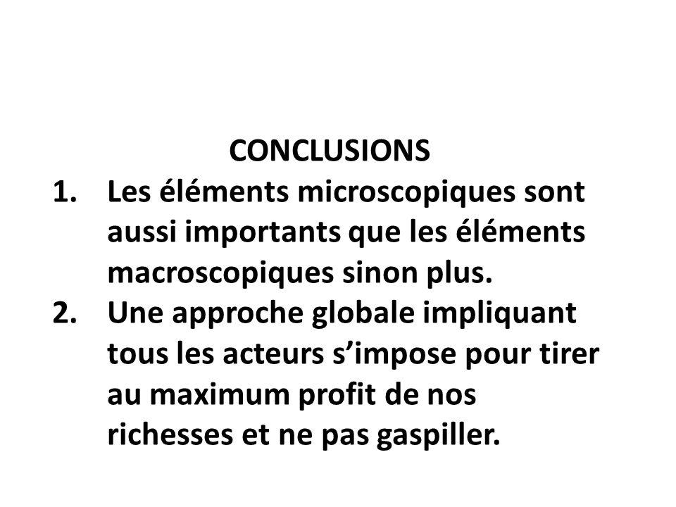 CONCLUSIONS Les éléments microscopiques sont aussi importants que les éléments macroscopiques sinon plus.