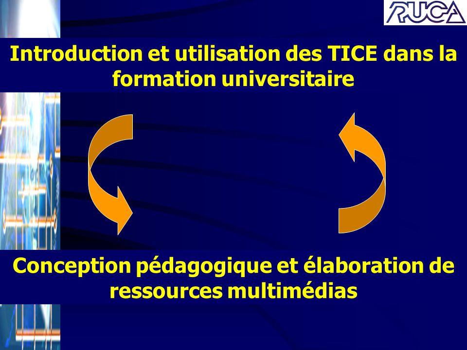 Introduction et utilisation des TICE dans la formation universitaire
