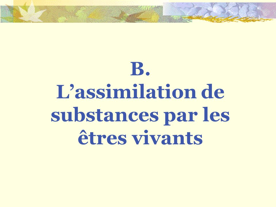 L'assimilation de substances par les êtres vivants