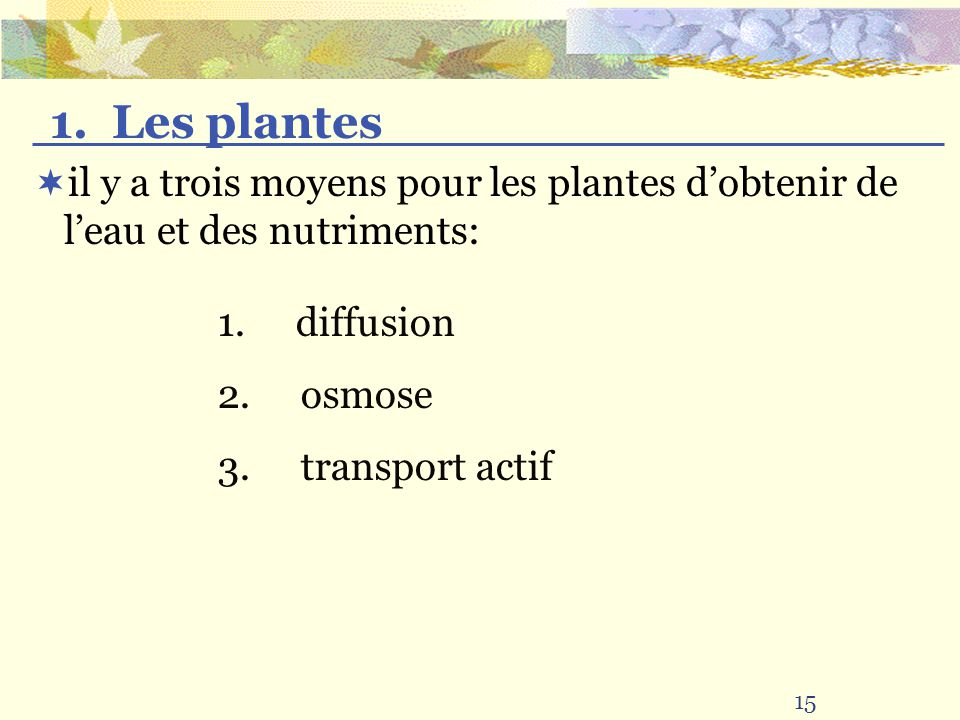 1. Les plantes il y a trois moyens pour les plantes d'obtenir de l'eau et des nutriments: 1. diffusion.