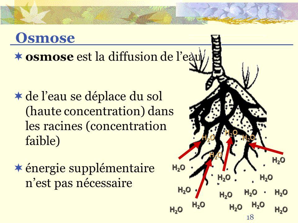 Osmose osmose est la diffusion de l'eau