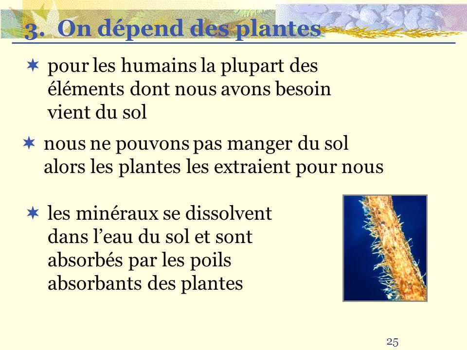 3. On dépend des plantes pour les humains la plupart des éléments dont nous avons besoin vient du sol.