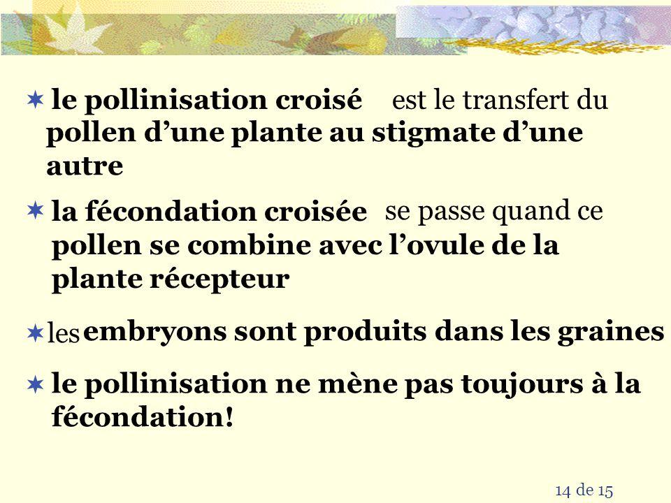 le pollinisation croisé pollen d'une plante au stigmate d'une autre